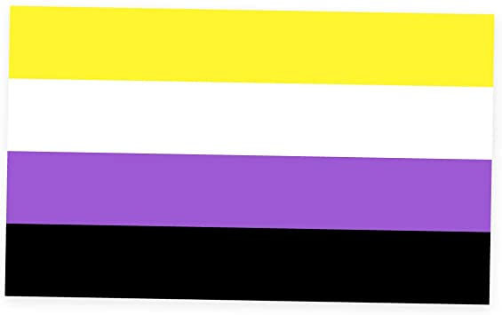the nonbinary flag (four horizontal stripes in yellow, white, purple, and black)