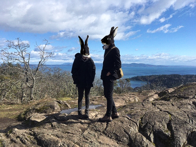 Rabbit people stand atop Mount Pkols, under a blue sky.