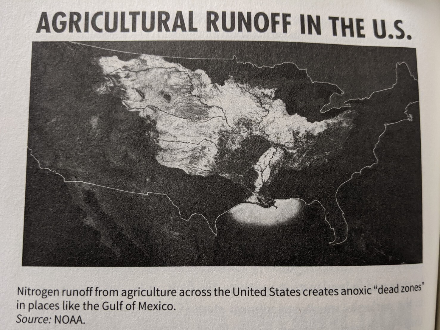 """A map of agricultural runoff, from agriculture across the United States creates anoxic """"dead zones"""" in places like the Gulf of Mexico."""
