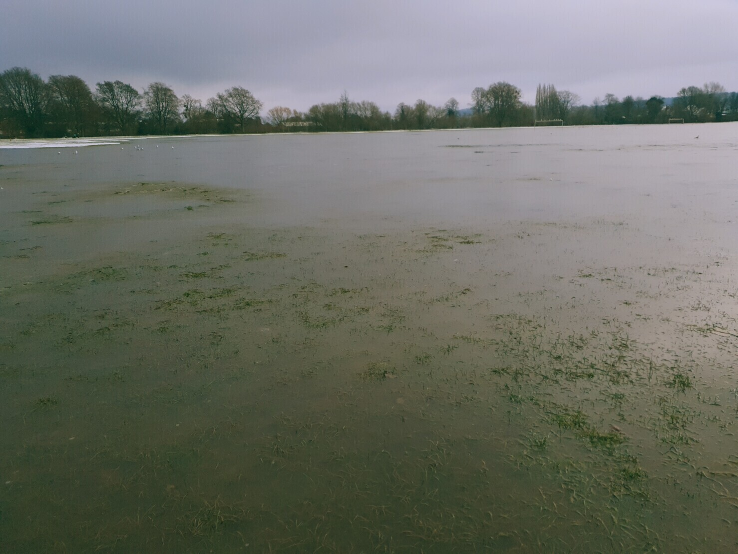 Frozen floodwater at Bishops Meadow park in Hereford